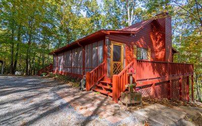 Ellijay Single Family Home For Sale: 176 Mountain Laurel Lane