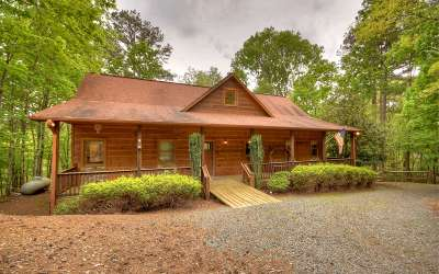 Ellijay Single Family Home For Sale: 2487 Newport Dr