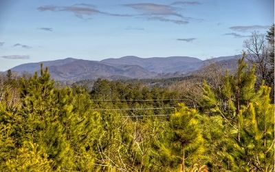 Ellijay Residential Lots & Land For Sale: 47.61 Ac Summit View