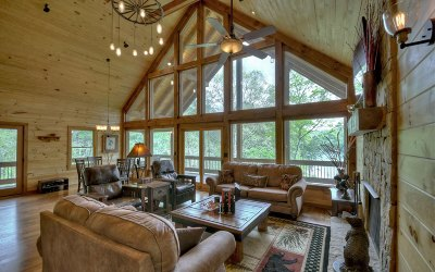 Blue Ridge Single Family Home For Sale: 2540 Dry Branch Road
