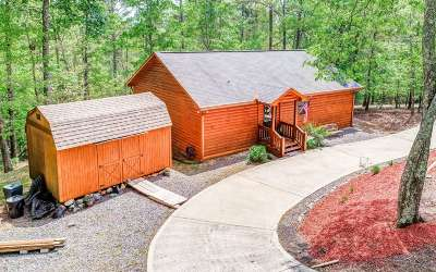Ellijay Single Family Home For Sale: 80 Eagle Mountain Drive