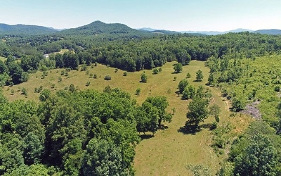 Warne Residential Lots & Land For Sale: Old Hwy 64