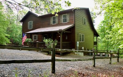 Ellijay Single Family Home For Sale: 347 Zeblin Road