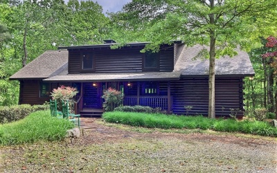 Ellijay Single Family Home For Sale: 340 North Ridge Dr