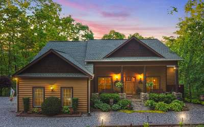 Mineral Bluff Single Family Home For Sale: 127 Bennett Springs Ct