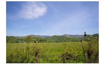 Andrews Residential Lots & Land For Sale: Valley River Lane