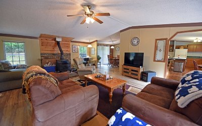 Blairsville Single Family Home For Sale: 497 New Jewell Mason Rd