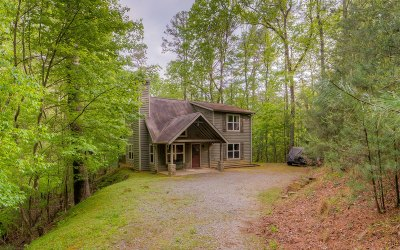 Ellijay Single Family Home For Sale: 170 Fern Drive