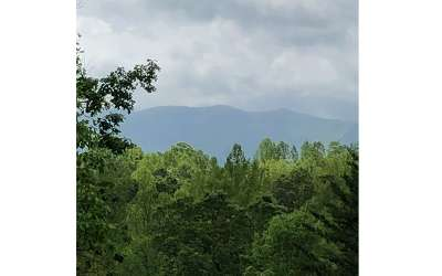 Young Harris Residential Lots & Land For Sale: Lot 6 Ruby Ridge