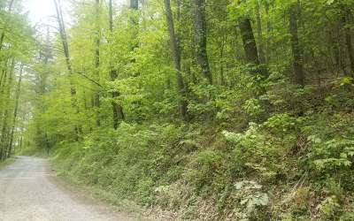 Suches Residential Lots & Land For Sale: 3+ac Coopers Creek Road