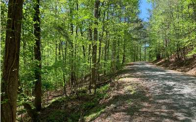 Ellijay Residential Lots & Land For Sale: Oneida Circle