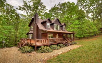 Blairsville Single Family Home For Sale: 260 Oak Hills Dr