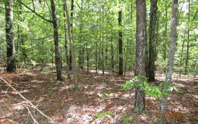 Mineral Bluff Residential Lots & Land For Sale: Snowbird Trail