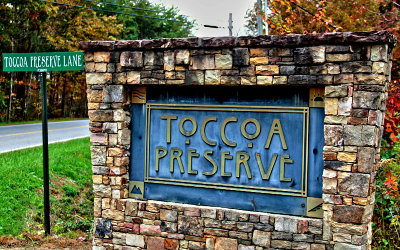 Blue Ridge Residential Lots & Land For Sale: Lot 1 Toccoa Preserve