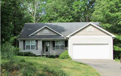 Ellijay Single Family Home For Sale: 328 Wingate Road
