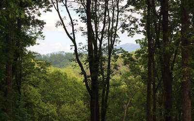 Ellijay Residential Lots & Land For Sale: Lt233 Andes Ridge Lot 233