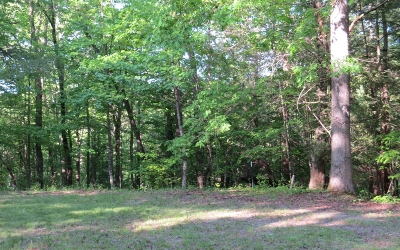 Ellijay Residential Lots & Land For Sale: 60, 61 Black Hawk Holler Tr