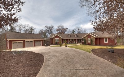 Pickens County Single Family Home For Sale: 1939 John Call Rd