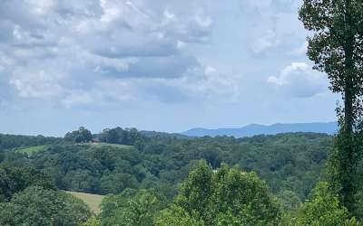 Ellijay Single Family Home For Sale: 420 Piney Spur