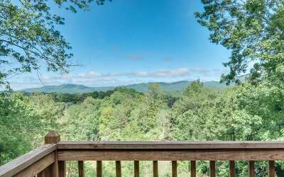 Cherokee County Single Family Home For Sale: 1060 Canyon Road