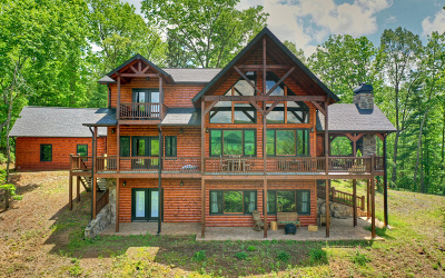 Ellijay Single Family Home For Sale: 254 Settler's Ridge Road