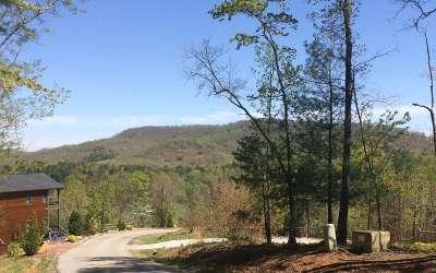 Blue Ridge Residential Lots & Land For Sale: Lt 19 Deer Crest Rd.