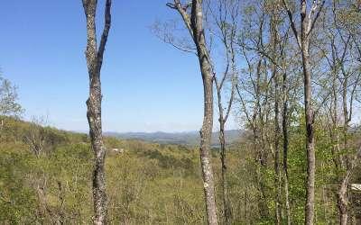 Blue Ridge Residential Lots & Land For Sale: Lt 21 Deer Crest Rd.