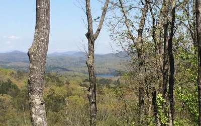 Blue Ridge Residential Lots & Land For Sale: Lt 25 Deer Crest Rd.