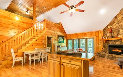 Ellijay Single Family Home For Sale: 485 Newport Drive