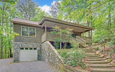 Ellijay Single Family Home For Sale: 132 Ridgeview Court