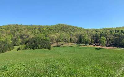 Hayesville Residential Lots & Land For Sale: Carter Cove South