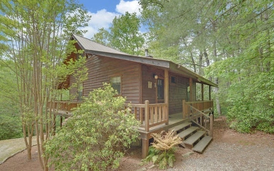 Blairsville Single Family Home For Sale: 677 Ridge Road