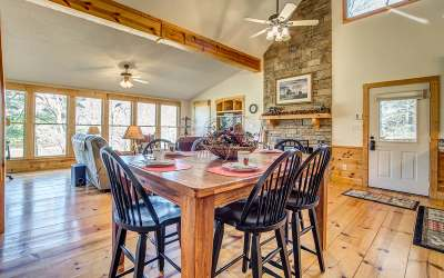 Ellijay Single Family Home For Sale: 363 Licklog Road