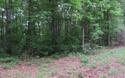 Ellijay Residential Lots & Land For Sale: Holly Berry Drive