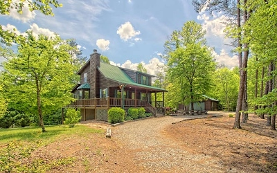 Blairsville Single Family Home For Sale: 337 Holly Cove Circle