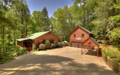 Ellijay Single Family Home For Sale: 22 Bear Trail