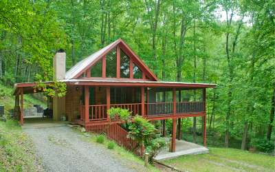 Hayesville Single Family Home For Sale: 169 East Pond Lane