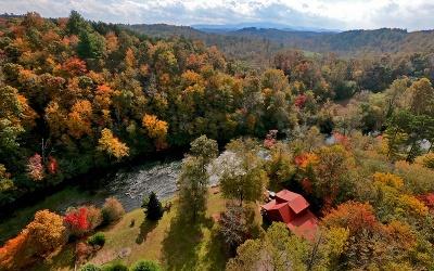 Fannin County Single Family Home For Sale: 650 Blackberry Drive