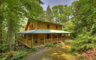 Blue Ridge Single Family Home For Sale: 33 Ivy Overlook