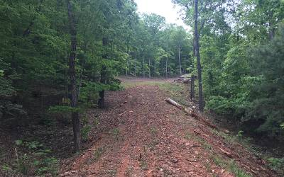 Young Harris Residential Lots & Land For Sale: Lot15 Mountain Shadow Dr