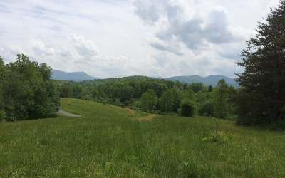 Young Harris Residential Lots & Land For Sale: Lt 54 The Preserve