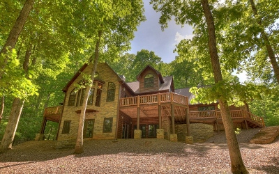 Blue Ridge Single Family Home For Sale: 1569 Shady Falls