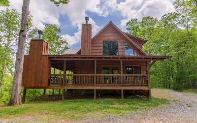 Mineral Bluff Single Family Home For Sale: 101 Moccasin Trail