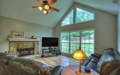 Ellijay Single Family Home For Sale: 1342 Dalrymple Circle