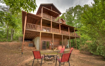 Mineral Bluff Single Family Home For Sale: 265 Humphrey Heights