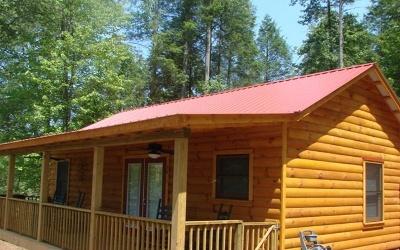 Murphy Single Family Home For Sale: 55 Sawyers Cove