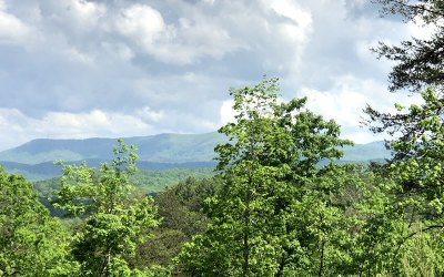 Blue Ridge Residential Lots & Land For Sale: 16.23 Price