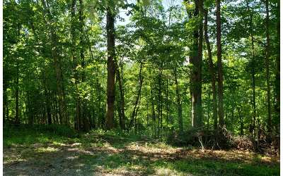 Ellijay Residential Lots & Land For Sale: Cherokee Ct Lot 461