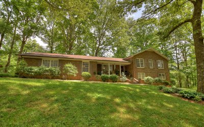 Ellijay Single Family Home For Sale: 822 Tails Creek Road