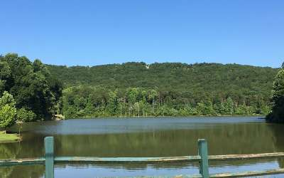Jasper Residential Lots & Land For Sale: Lt278 Salacoa Vista